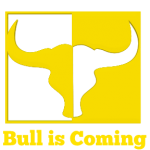 Bull is coming