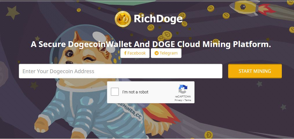 rich doge review