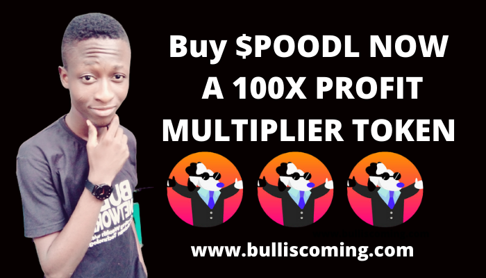 Buy $POODL Token Now for 1000x Profit